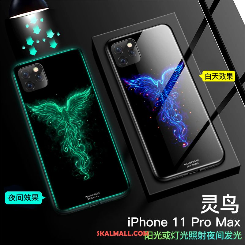 iPhone 11 Pro Max Skal Fallskydd All Inclusive Trend Spegel Svart Billigt